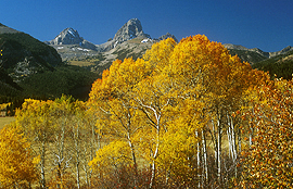 Fall Landscape Teton National Forest  Idaho