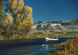 Autumn canoeing on the Madison River